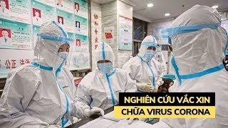 Ai đang nghiên cứu vắc xin phòng chống virus Corona gây bệnh viêm phổi Vũ Hán?