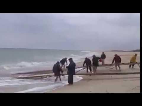 Autunno pescando con video ostrogy