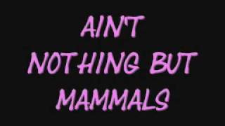 Aint Nothing But Mammals