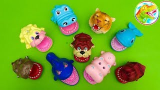 Search for lovely animal friends - kids toys F546H ToyTV