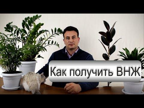 Как получить ВНЖ? Как оформить вид на жительство в России