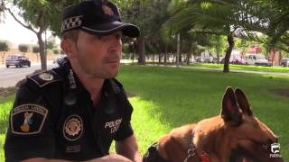 preview picture of video 'Urko, Unidad Canina de la Policía Local de Paterna'