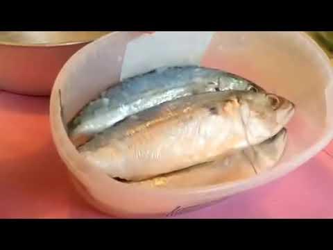 พยาธิโรคปลา