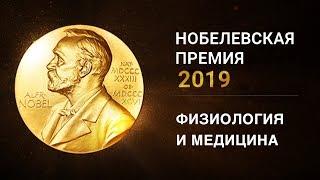 Нобелевская премия 2019 по физиологии и медицине. Объявление лауреатов.
