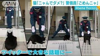 "歴史的""迷""勝負!?・・・小さな""訪問者""vs警備員(18/11/01)"