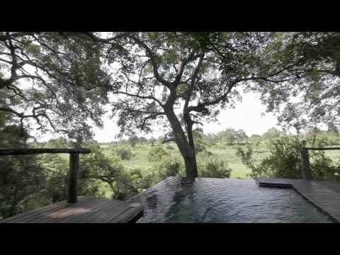 Planning a Honeymoon in South Africa