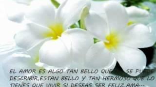 Luis Fonsi feat David Visbal - Perdoname
