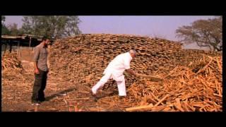 Sahi Dhande Galat Bande Trailer