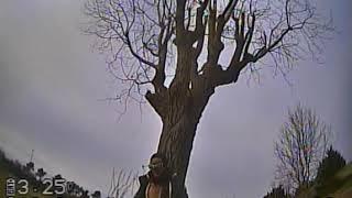Fpv racer DVR brut 1ere sortie autour des arbres