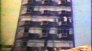 LULU SANTOS   LEI DA SELVA   1988