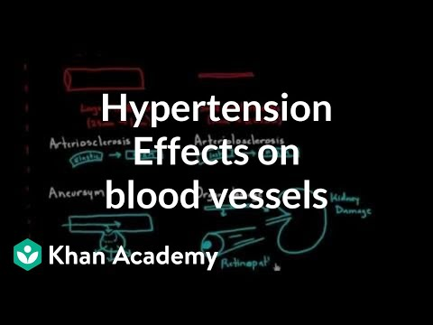 La génétique de lhypertension