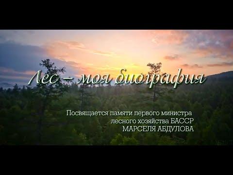 Фильм «Лес — моя биография»