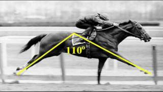 Man O' War vs Secretariat