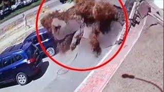 Топ 30 видео с камер наблюдения которые повергают людей в шок  часть 2