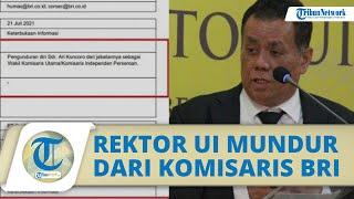 BREAKING NEWS - Rektor UI, Ari Kuncoro Resmi mengundurkan Diri dari Jabatannya Komisaris BUMN