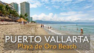 20 minute walk along Playa de Oro Beach, Puerto Vallarta Hotel Zone