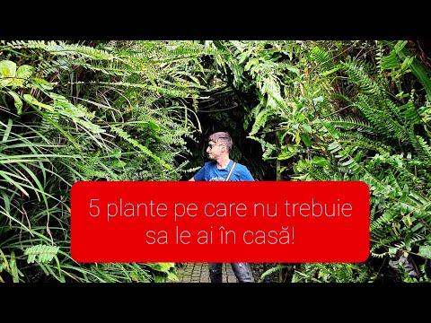 Botanic slimming hrvatska