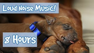 MUSIC FOR DOGS! Soothing Music for Anxious Dogs, Perfect for July 4th Fireworks and Loud Noises 🐶🎆