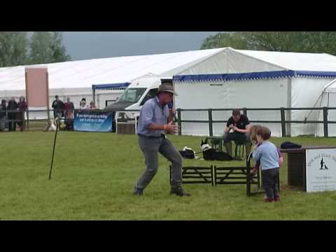 Dog & Duck Show At The Royal Bath & West Show 2014