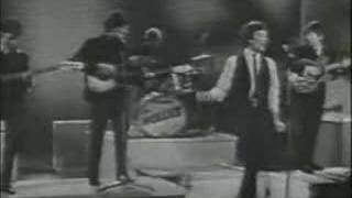 Too Much Monkey Business - The Hollies