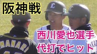 西川愛也選手、実戦で代打ヒット、VS阪神タイガース