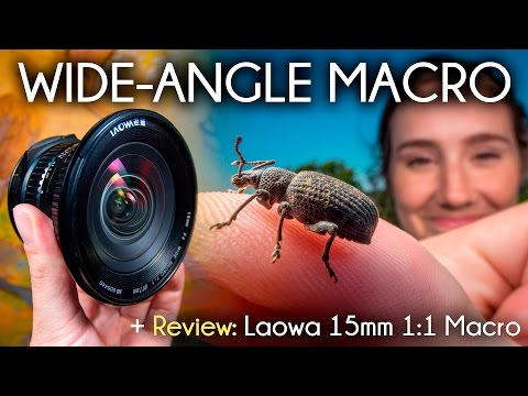 Wide Angle Macro and the Venus/LAOWA 15mm Macro Lens