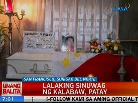 [GMA]  UB: Lalaking sinuwag ng kalabaw sa Surigao del Norte, patay