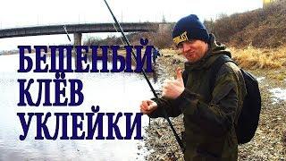 Соревнования по рыбной ловле 2020 псков