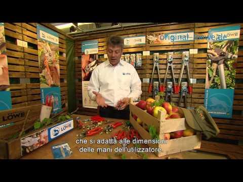 originali LÖWE Cesoie per orticoltura e Troncarami