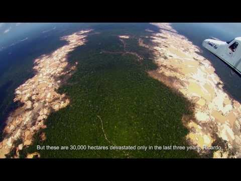Aerial footage of vast illegal Gold mines in the Amazon of eastern Peru.