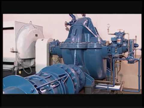 WSO Water Treatment Grade 1: Pumps, Ch. 19