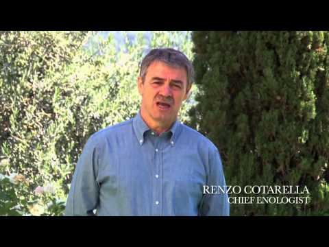 Antinori Peppoli Chianti Classico - Voyageurs du Vin