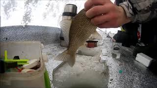 Где клюет рыба в карасуке