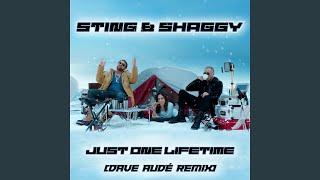 Just One Lifetime (Dave Audé Remix)