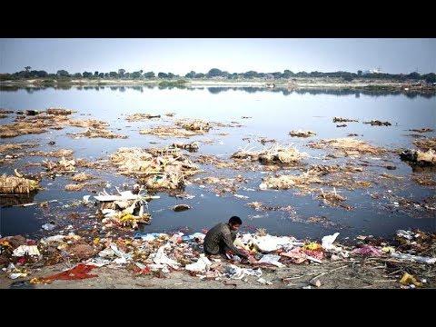 यमुना सफाई के लिए सरकार के साथ समाज और साधू संत भी आए आगे |