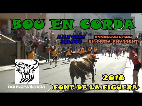 FONT DE LA FIGUERA (V) 2018 - BOU EN CORDA A.C.T GENT DEL BOU Y ASSOCIACIO BOU EN CORDA (PICASSENT)