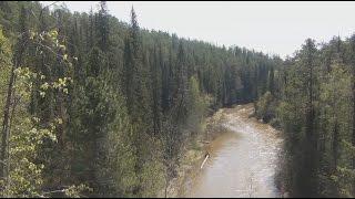 Рыбалка на таёжных реках фото