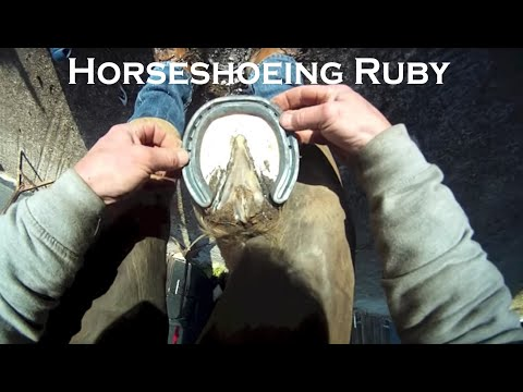 Shoeing Ruby