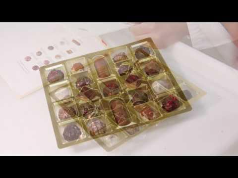 Edle Pralinen von Schwermer aus Bad Wörishofen Schokolade Verpackung Trüffel Marzipan Herstellung