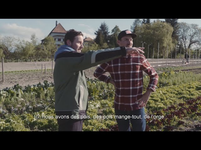 Coke & Meals   Farbian Zbinden   épisode 2