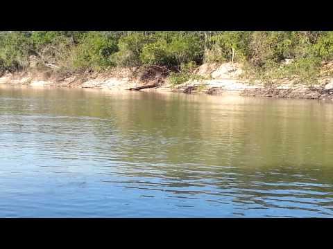 Peixe batendo no Rio Caiapó!  Abreulândia - TO