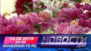 14.06.2019 Новости дня 20:00