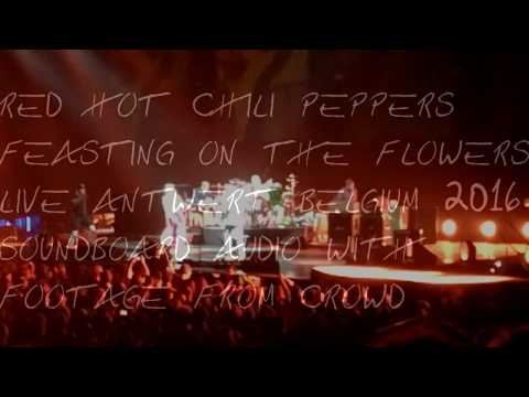Red Hot Chili Peppers - Feasting on the Flowers live Antwerp 2016 Soundboard audio