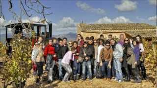preview picture of video 'Mallorca Wine Tours'