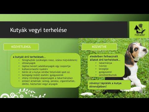 Féreg elleni gyógyszerek 3 éves gyermekek számára