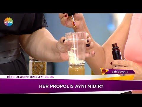 Propolis nedir?