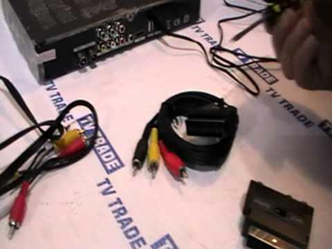 RCA to Scart Adaptor