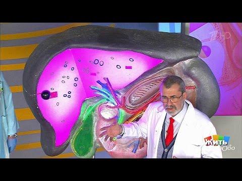 Трансаминазы при лечении гепатита