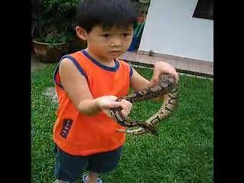 طفل مع ثعبان