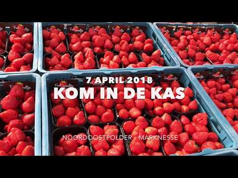 Aftermovie Kom in de Kas 2018